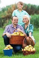 familie oogsten appels in de tuin foto