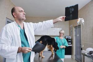 dierenarts en assistent in een dierenkliniek foto