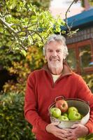 volwassen man appels plukken van boom in de tuin foto