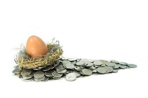 bruine eieren in een nest op munten foto