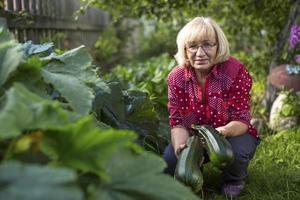 vrouw met een courgette in zijn tuin. foto