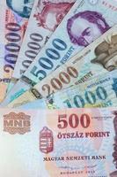 Hongaarse forint foto