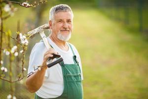 senior tuinman in zijn tuin foto