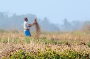 Indiase landelijke man aan het werk in het veld foto