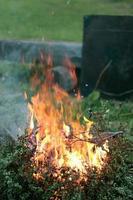 vlammen van vuur brandende struik foto