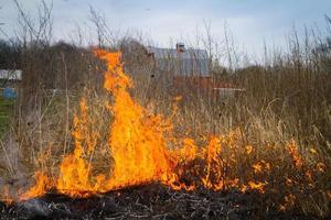 een veld branden foto