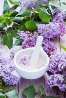 lila bloemen en suiker foto