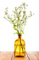 kruidengeneeskunde concept - fles met kamille op houten tafel foto