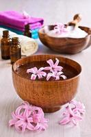 bloemen roze hyacint. spa. foto
