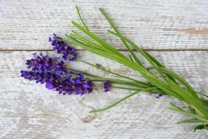 ontspannende geurende lavendelbloemen op oude lege witte houten achtergrond foto