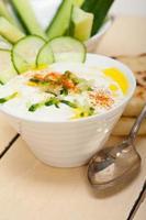 Arabische Midden-Oosten geitenyoghurt en komkommersalade foto