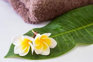 frangipani en handdoek foto