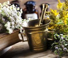 diverse natuurlijke medische kruiden en vijzel foto