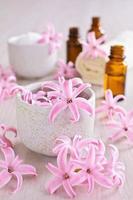 bloemen roze hyacint. spa.