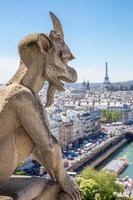 waterspuwer Parijs foto