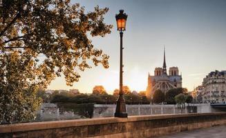 Notre Dame kathedraal in Parijs, Frankrijk foto