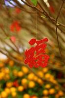 traditioneel Chinees symbool voor de komst van geluk foto
