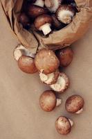 champignons foto