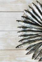 vijf sardines foto