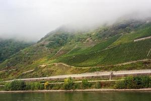 Rijndal, germaan