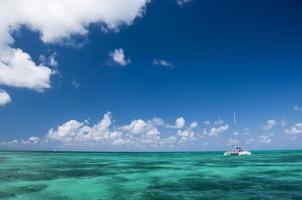 witte catamaran met toeristen foto