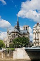 notre dame de paris cathedral.paris. Frankrijk foto
