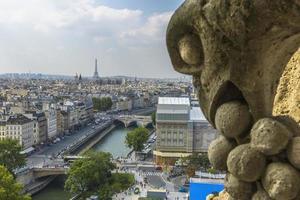 luchtfoto van Parijs van Notre-Dame foto