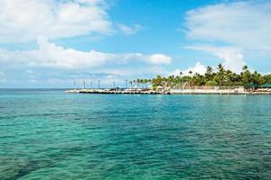 azuurblauwe oceaan en palmbomen op hawaii foto