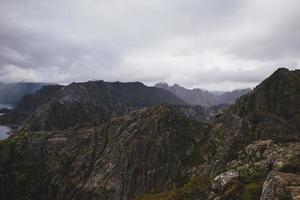 lofoten noorse heuvels met planten foto
