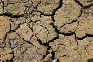 verschroeide aarde foto