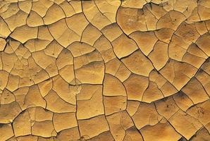 droge gebarsten aarde foto