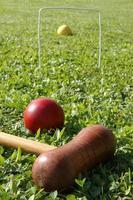croquet spelen foto