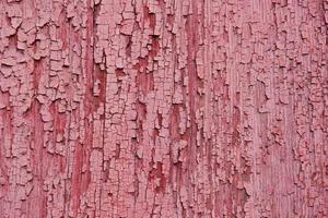 textuur. hout foto