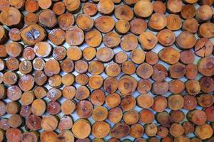 behang muur van logs