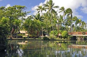 Polynesisch dorp foto