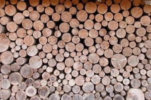 droog gehakt brandhout, gestapelde boomstammen foto