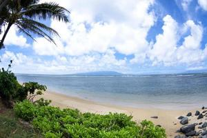 Hawaiiaans tropisch strand foto