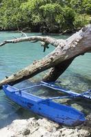typische vanuatu-boot - blauw gat foto