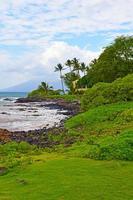 Maui foto