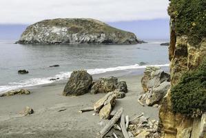 kustlijnscène in Californië foto