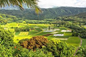 Hanalei-vallei in Kauai, Hawaï