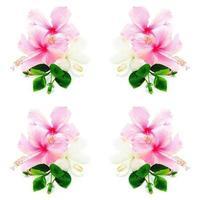 roze en witte hisbiscus foto