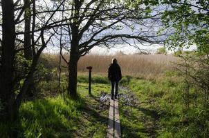 wandelen in de natuur in het voorjaar foto