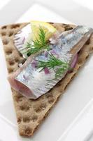 ingelegde haring op knapperig brood foto