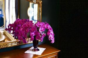 orchidee bij het raam foto
