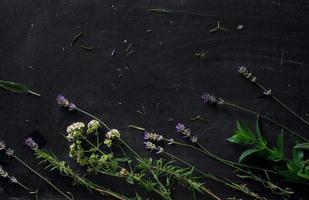 Franse kruiden op het zwarte bureau foto