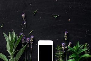 Franse kruiden en telefoon op het zwarte bureau bekijken foto