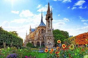 notre dame de paris kathedraal, tuin met bloemen. parijs. Frankrijk