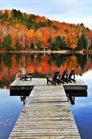 kleurrijke herfstbladeren achter houten dok foto