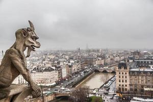 waterspuwer en de skyline van Parijs foto